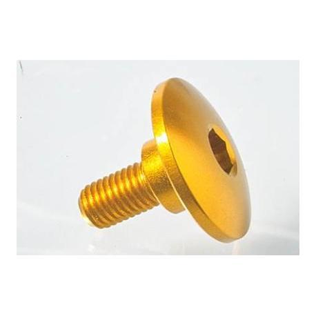 Vis spéciale Ergal 7075 LIGHTECH M7 X 17,5 type 964 argent